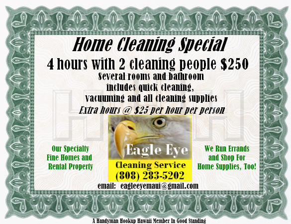 Home Cleaning Special